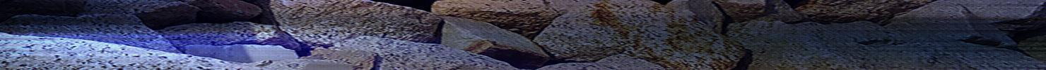 【听雨音画】一片岸 单图/特效(原创版),预览图8