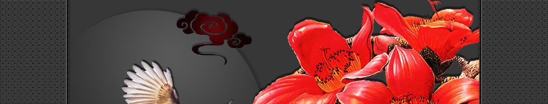 【听雨音画】木棉花红 大图音画(原创版),预览图1