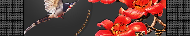 【听雨音画】木棉花红 大图音画(原创版),预览图2