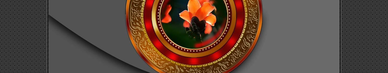 【听雨音画】木棉花红 大图音画(原创版),预览图12