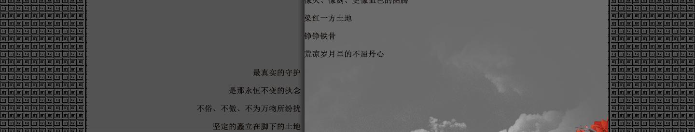 【听雨音画】木棉花红 大图音画(原创版),预览图14