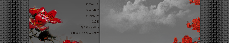 【听雨音画】木棉花红 大图音画(原创版),预览图15