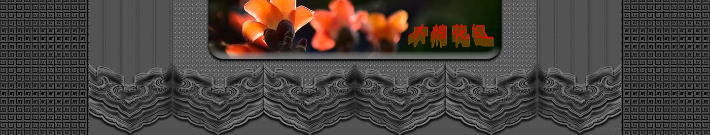 【听雨音画】木棉花红 大图音画(原创版),预览图20